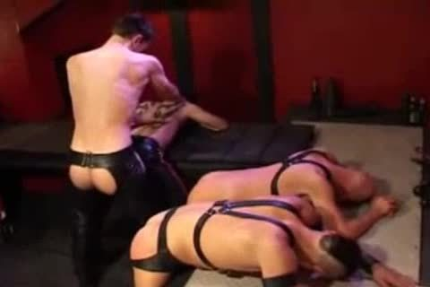 Leather butthole plowing And Fisting