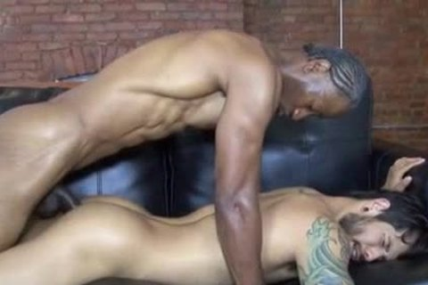 RNF- Draven Torres And Jerry Stearns bang