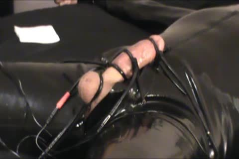 Iliff Applies Electro To Vidar's penis For Over An Hour And acquires Three wonderful Orgasms.