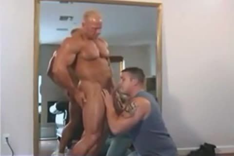 powerful Dakota James plow Ty Fox In Muscle studs Moving Compangy Inc two