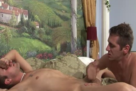 Randy homo studs Are pounding In sofa brutaly