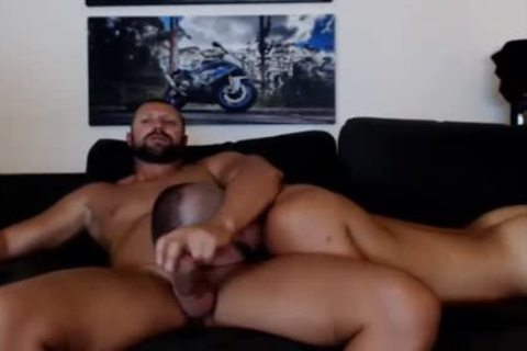 young Bear Sucks A mature Bears shlong Live On Cruisingcams Com