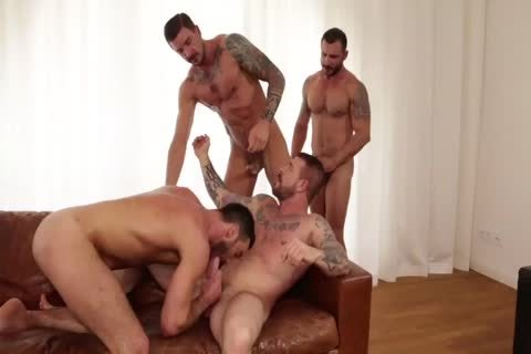 Jump Into Rocco Steele's Breeding Party
