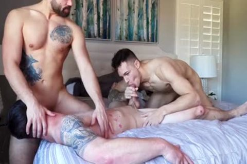 Three WAY! lovely College Males Have outstanding homo Sex. lovely video