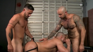 Pride Studios: Caucasian Riley Mitchel is really bald blond